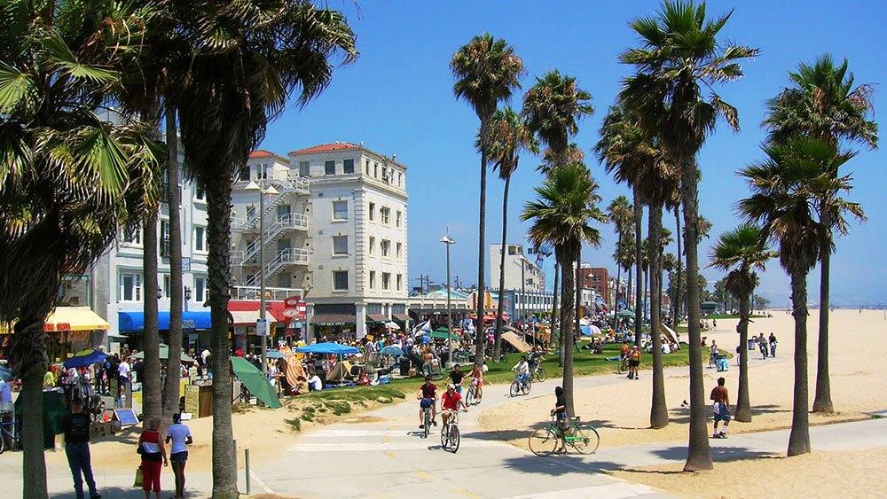 Best Hotels Venice Beach Florida