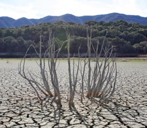 What is left from Lake Cachuma (Source: Noozhawk Santa Barbara).