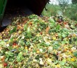 Atrocious Amounts of Food is thrown away yearly! (Source: google images)