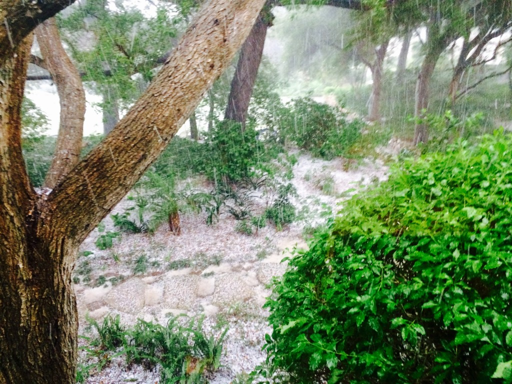 """Monday's hailstorm lays an icy crust in Montecito"" Picture by Tamlorn Chase"