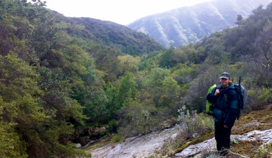 A rare break in the dense chaparral