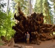 This summer was bigger than I expected during recent trip to Yosemite. -Dylan Broyles