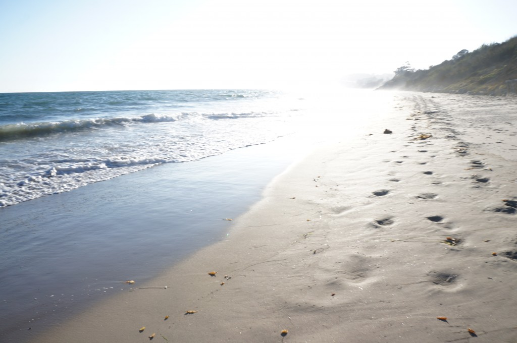Beautiful Beach Walk in Santa Barbara. Cannot have enough of these (Photo by Adele de Batz)