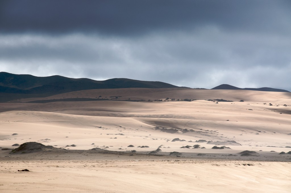 Guadalupe-Nipomo Dunes | Guadalupe, CA | Photo Courtesy of Creative Commons