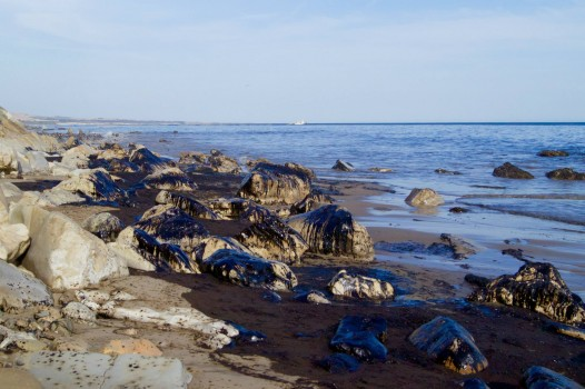 Rocks at Refugio State Beach covered in crude oil that spilled from an Plains All-American Pipeline onshore (Photo Courtesy: Tamlorn Chase)