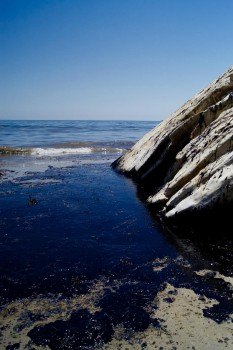 Oil meets rock at the Refugio Beach oil spill. Photo: Tamlorn Chase
