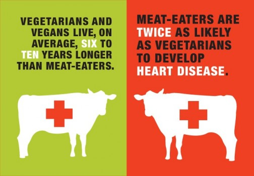 42 Percent of Vegetarians are between the ages of 18-35