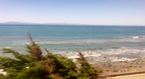 Took the Amtrak down the coast to Irvine for the weekend. -Niki Cohen