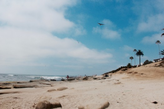 This is why I've been trying to spend all my free summer days. La Jolla, San Diego -Niki Cohen